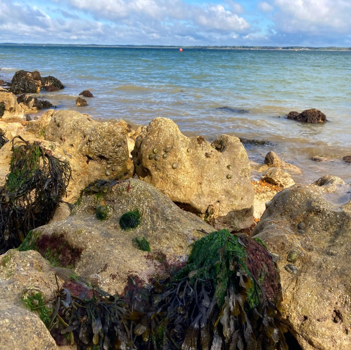 Orange hat Ladies, sea swimming, isle of wight