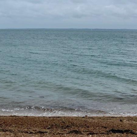 orange hat ladies, sea swimming, wild swimming